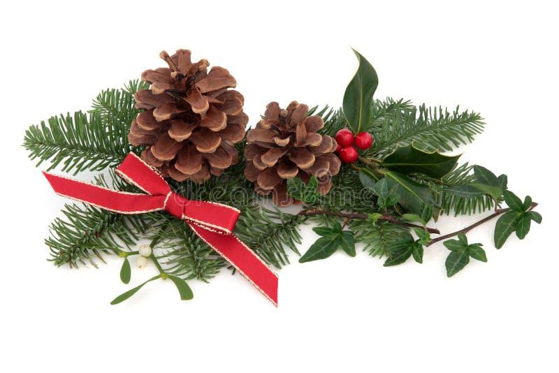Christmas Flora And Fauna Royalty Free Stock Photos