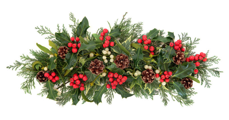 Christmas Flora and Fauna royalty free stock images