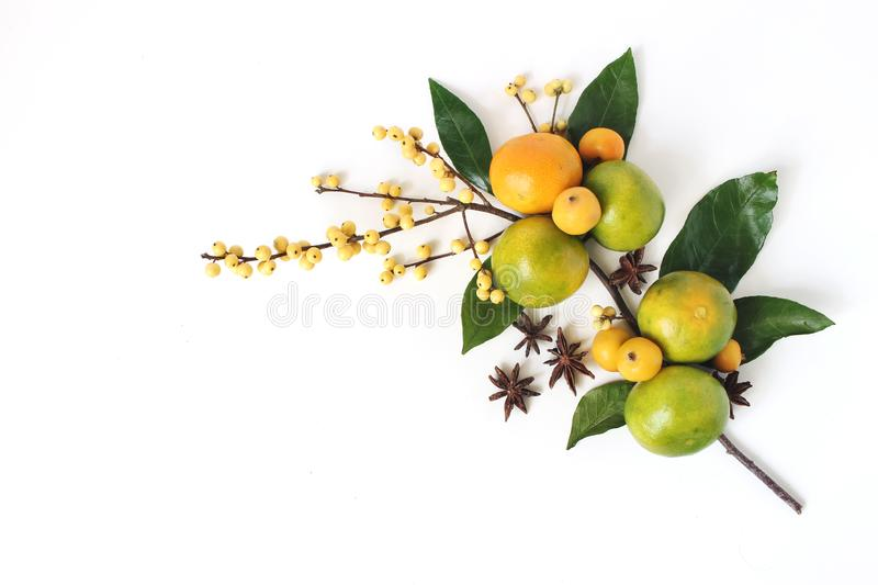 Christmas floral composition. Decorative corner, branch of tangerine citrus fruit and leaves, anise stars, yellow holly stock images