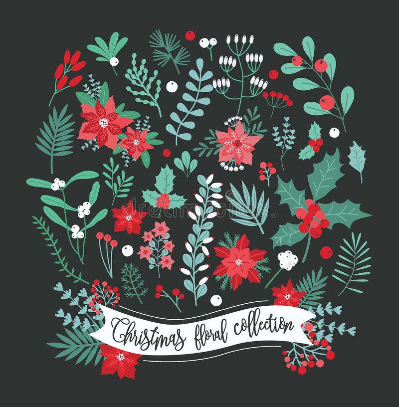 Christmas floral decoration collection. Set of different flowers, leaves and berry. Colorful vector design elements stock illustration