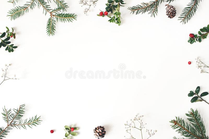 Christmas floral frame, decorative border. Winter composition of red cranberry branches, baby`s breath flowers, spruce stock image