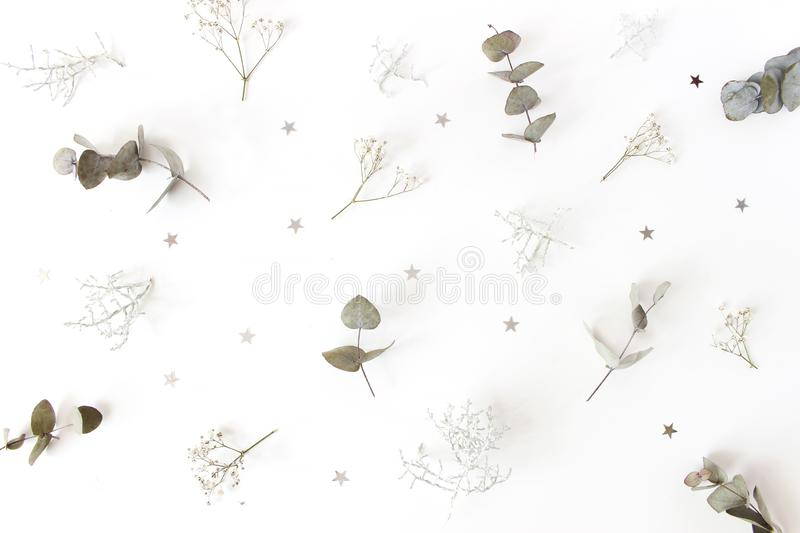 Christmas floral pattern. Winter composition of eucalyptus tree branches, baby`s breath flowers, Calocephalus brownii stock photography