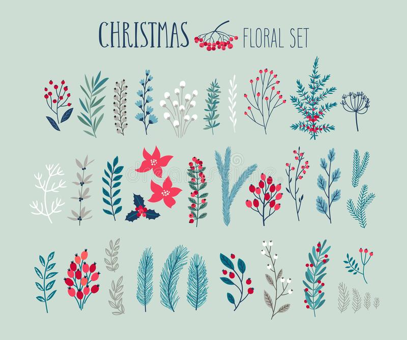 Christmas floral set - hand drawn. Vector illustration. with floral elements, leaves, flowers. firs and other plants vector illustration