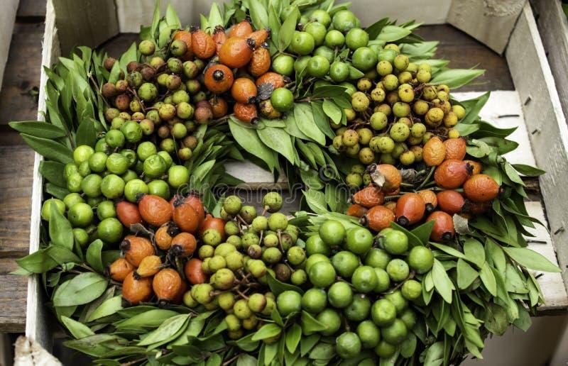 Christmas flowers wreath. Decoration with plants, nature, shape, cinnamon, season, classic, advent, round, celebration, symbol, winter, tradition, nobody stock photo