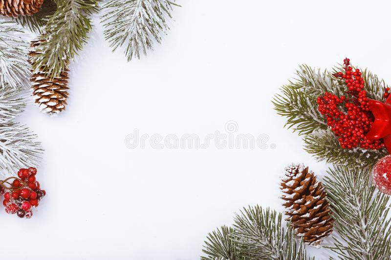 Christmas frame border on white, branches, cones and red berries stock image