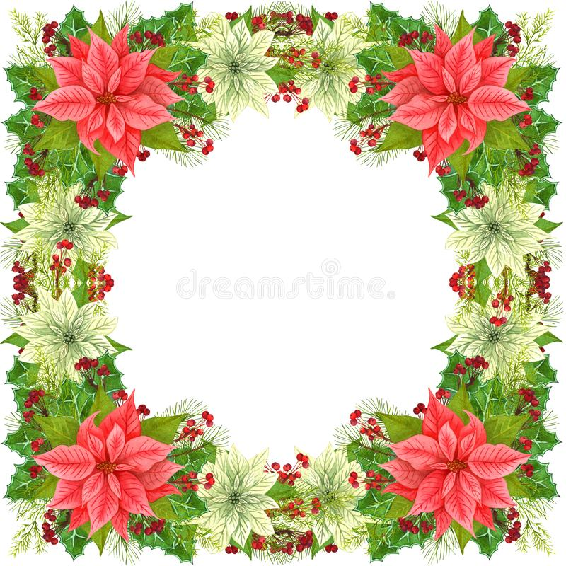 Christmas frame decoration Christmas star and winter plants: holly leaves, dried twig with red berries and fir branch isolated on vector illustration