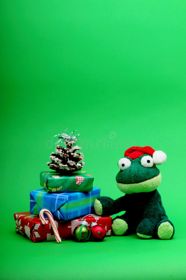 Christmas frog with gifts still life. Frog in Christmas hat with gifts, pine cone, candy cane and ornaments still life royalty free stock image