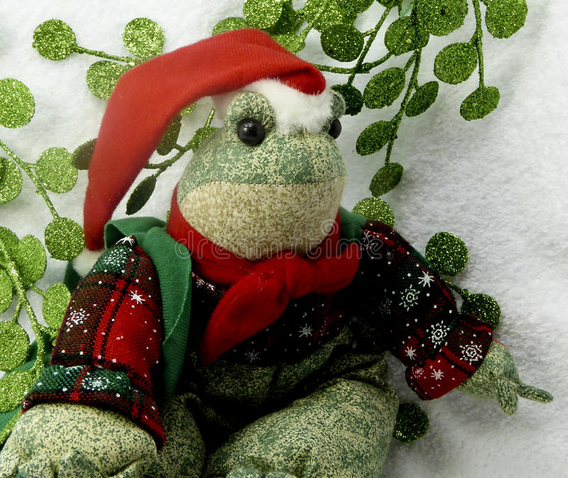 Christmas frog. Darling stuffed toy of a frog dressed up for Christmas stock photos