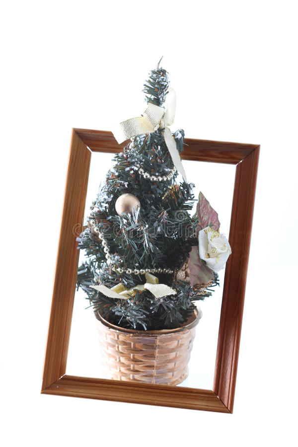 Download Christmas Fur-tree Royalty Free Stock Images - Image: 12077159