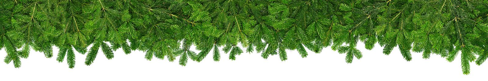 Christmas garland super wide panorama banner with fir branches royalty free stock images