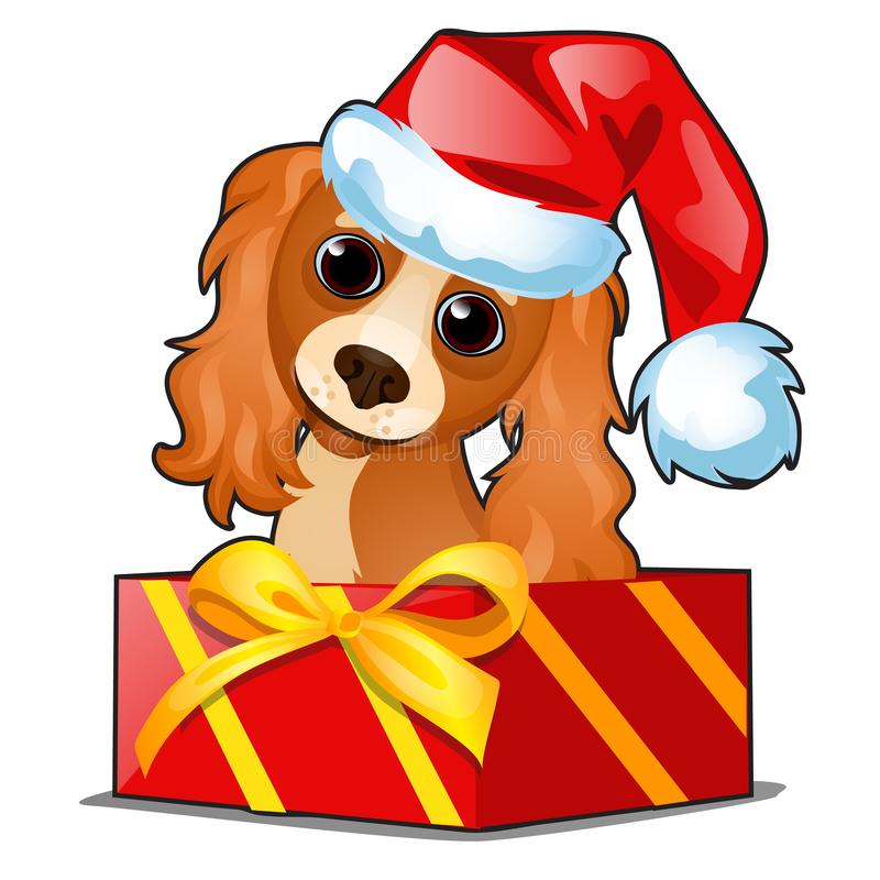 Christmas gift box with a cute dog in cap of Santa Claus isolated on white background. Sample of poster, party holiday stock photo