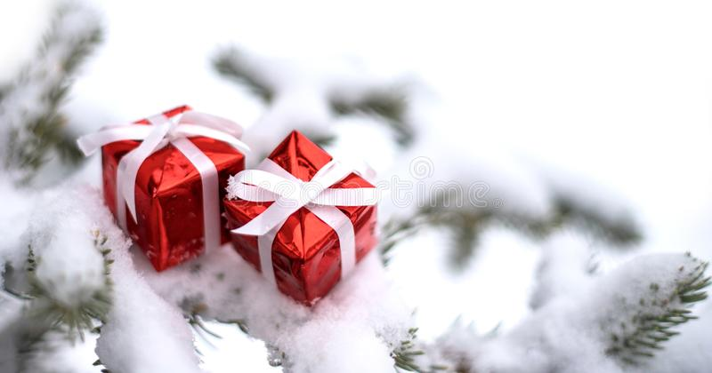Christmas gift boxes and snow fir tree. Christmas gift boxes and snow fir tree outside. Copy space. Festive concept stock image