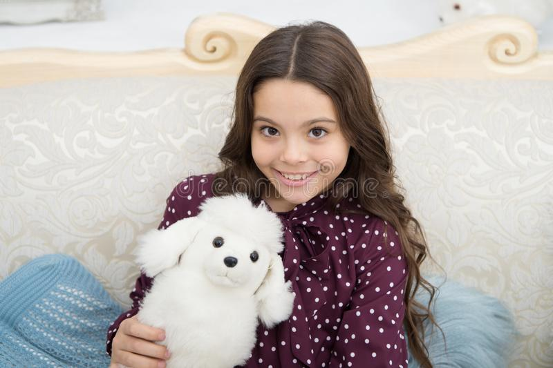 Christmas gift concept. Child cute small girl playful hold white dog plush toy. Kid little girl play toy dog puppy sofa royalty free stock images