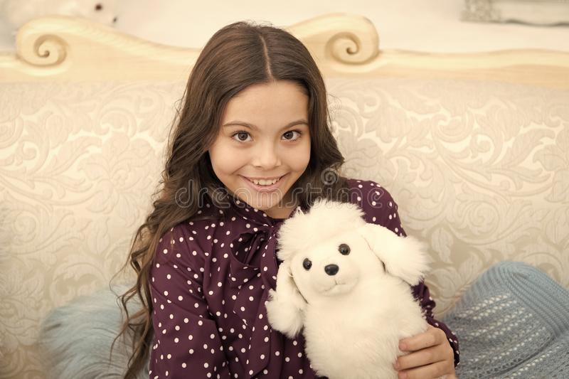 Christmas gift concept. Child cute small girl playful hold white dog plush toy. Kid little girl play toy dog puppy sofa. Background. Dog as best friend. She is stock photo