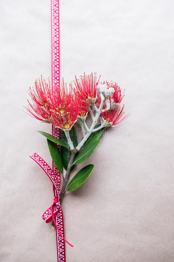 Christmas gift wrapped in plain paper with ribbon and Pohutukawa flower stock photography