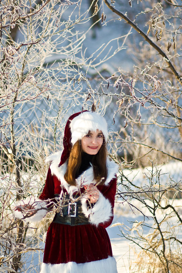 The Christmas girl royalty free stock photo