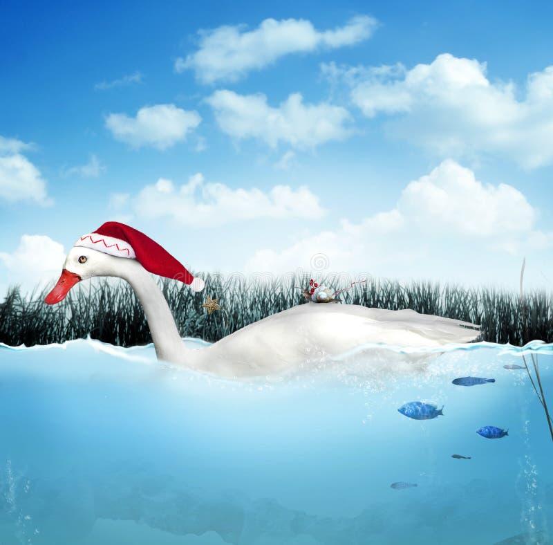 Free Christmas Goose Royalty Free Stock Photo - 27373535