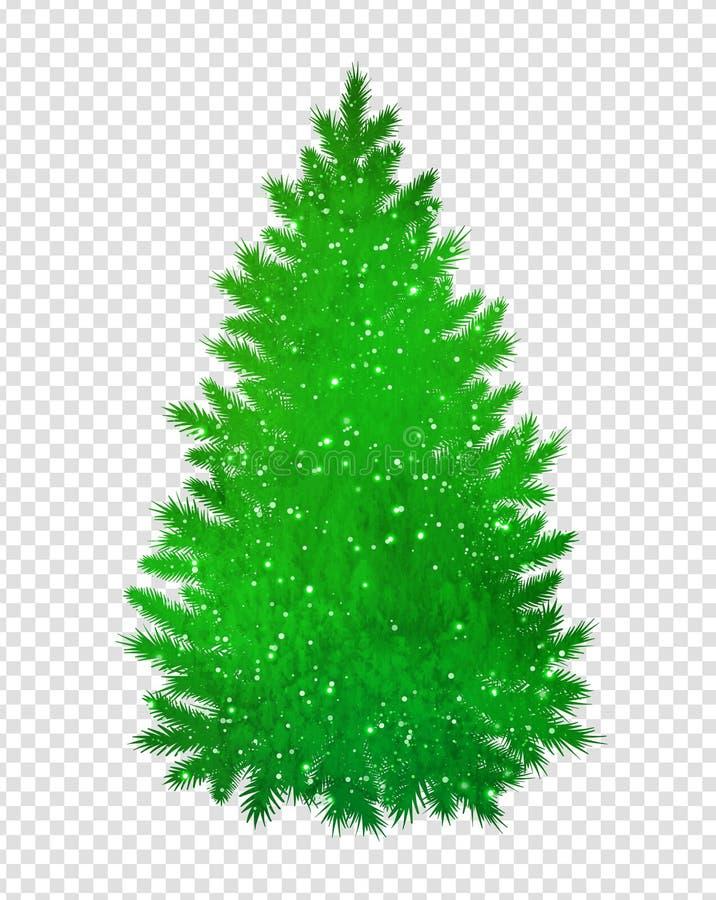 Christmas green spruce tree royalty free illustration