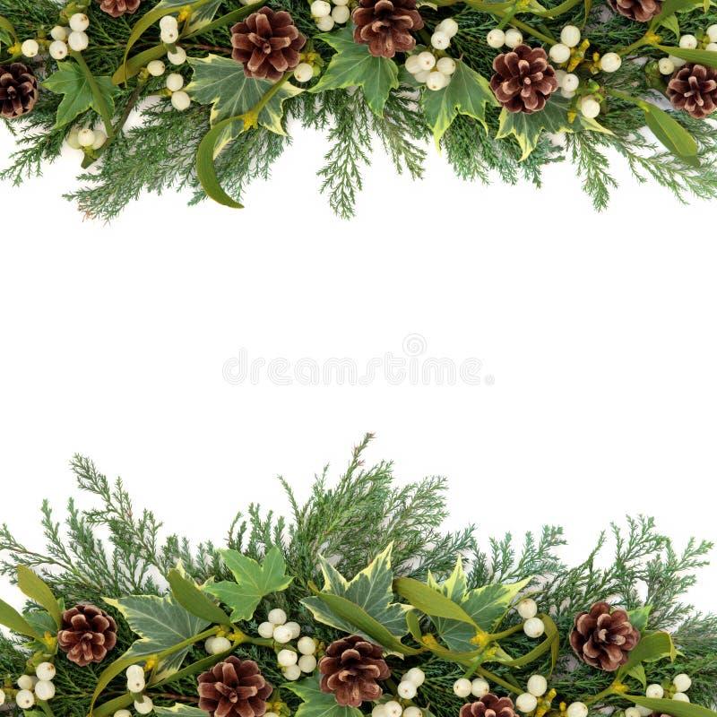 Free Christmas Greenery Border Stock Photo - 33268730