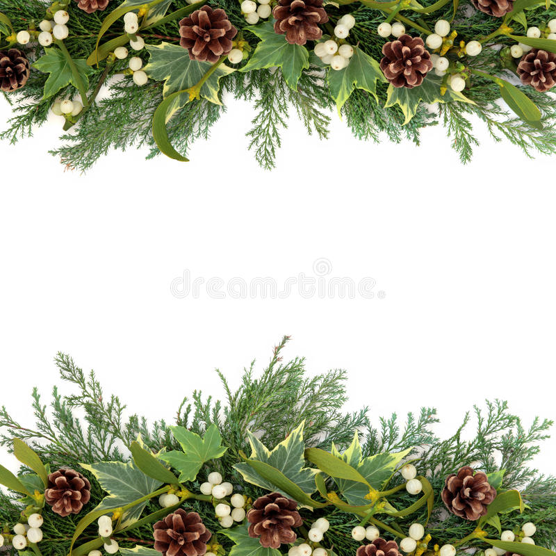 Christmas Greenery Border. Christmas floral background border with mistletoe, ivy, pine cones and winter greenery over white stock photo