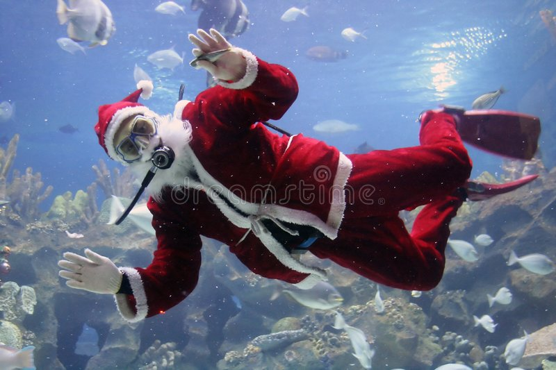 Christmas Greeting. From Santa Clause diver. (note: image is slightly grainy due to low light condition