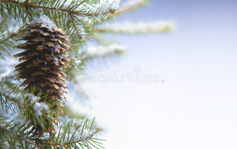Download Christmas greeting card stock image. Image of nature - 16451681