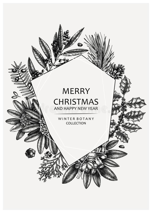 Christmas greeting card or invitation design. Vector frame with hand drawn conifers and evergreen plants. Vintage background trees royalty free illustration