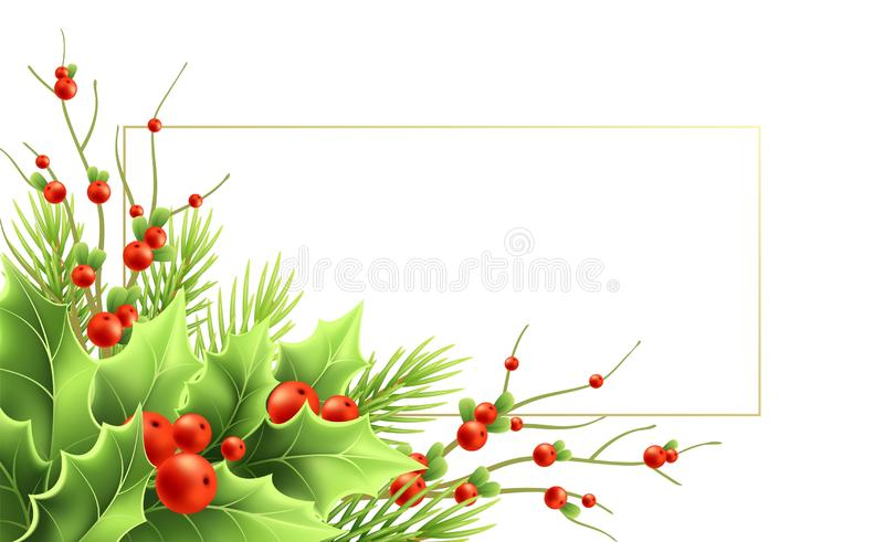 Christmas greeting card vector template with text frame. Realistic mistletoe twigs, red berries, holly, fir branches. Christmas decorative plants. Isolated royalty free illustration