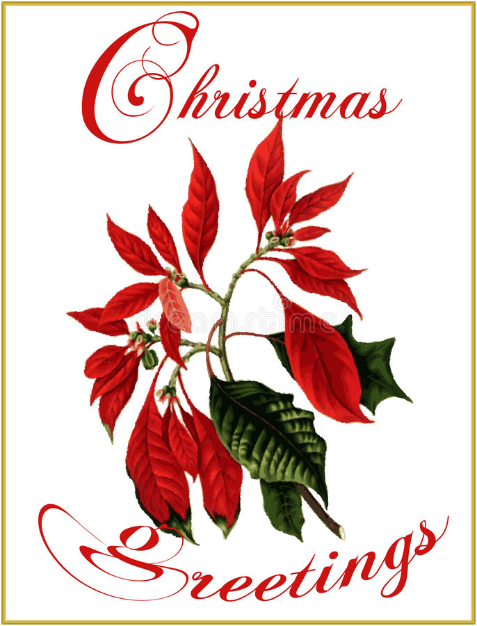 Christmas greetings. royalty free illustration