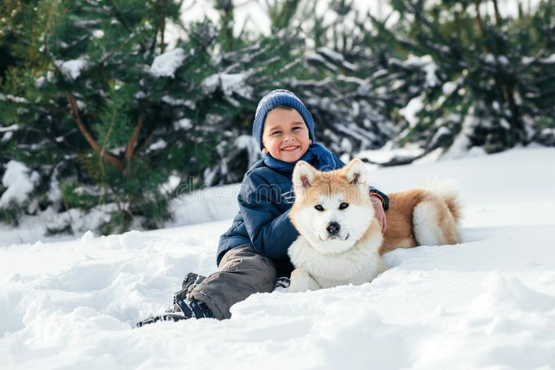 Christmas happy child boy running playing with Akita Inu dog on. Christmas happy child boy running playing with Akita-Inu dog on white snow in winter day. A stock photography
