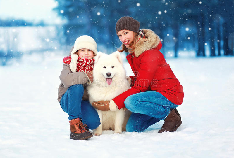 Christmas happy smiling family, mother and son child walking with white Samoyed dog on snow in winter day stock photos