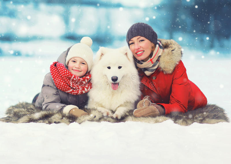 Christmas happy smiling family, mother and son child walking with white Samoyed dog in winter day, lying on snow. Over snowflakes stock photography