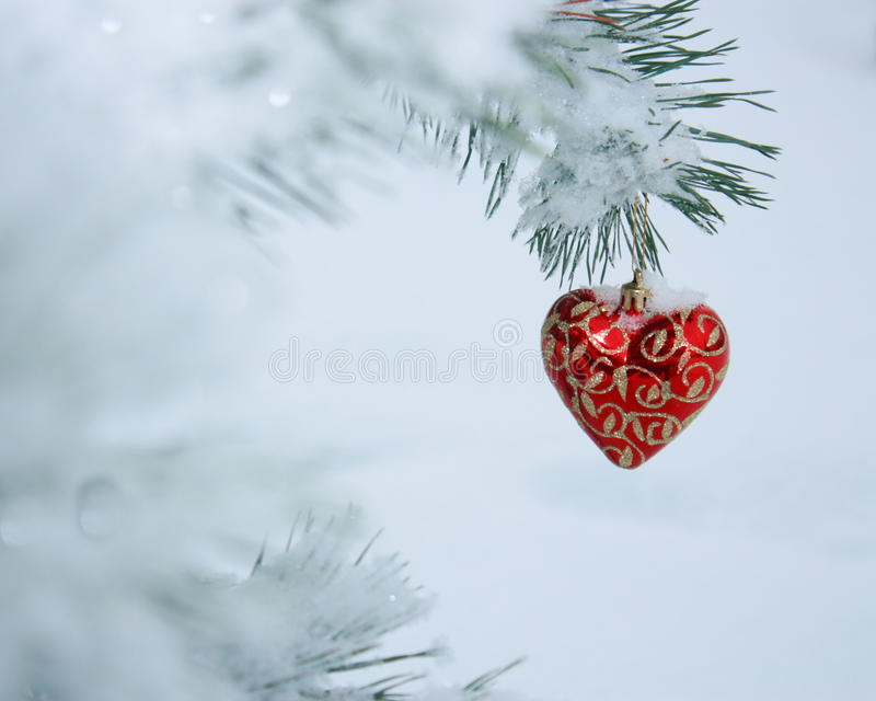 Christmas Heart Card - Stock Photo. Christmas Heart Card - Red Decoration: on Snow Covered Pine Branches Background - Outdoors stock photos