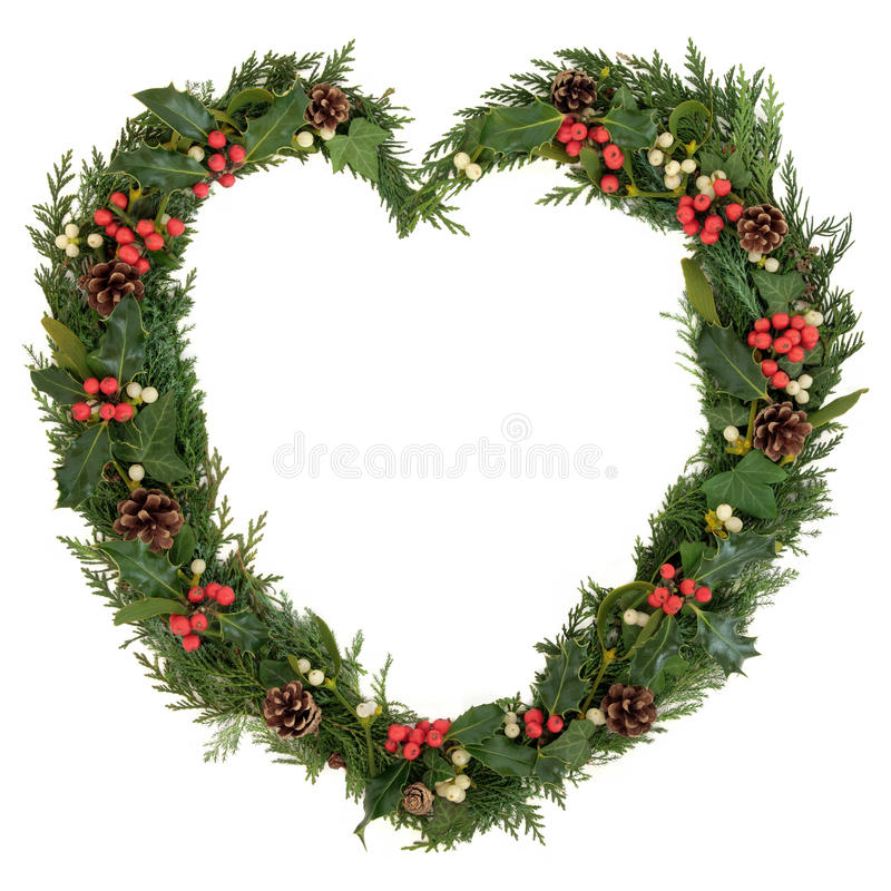 Christmas Heart Wreath. With holly, mistletoe, ivy, pine cones and cedar leaf sprigs over white background stock image