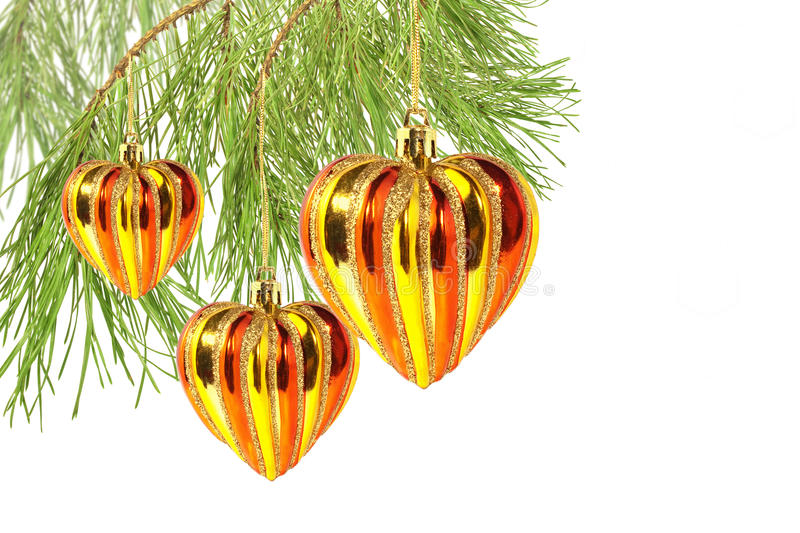 Download Christmas Hearts On Pine Tree Branch Isolated Stock Image - Image: 22129647