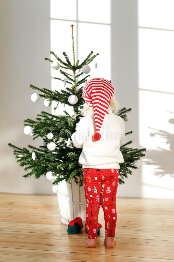 Christmas holiday concept. Back view of small child wears santa s hat, decorates fir tree at home, has festive mood. Prepares for coming New Year and Christmas royalty free stock photo