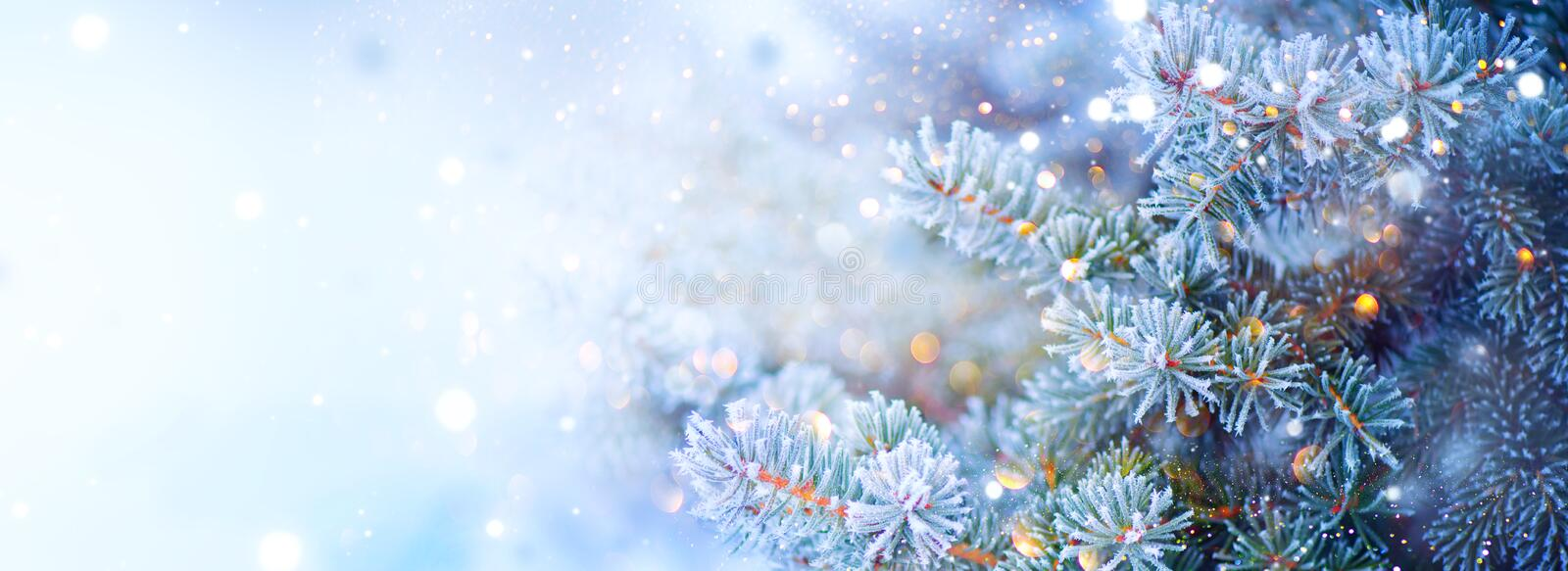 Christmas holiday tree. Border snow background. Snowflakes. Blue spruce, beautiful Christmas and New Year Xmas tree art design. Abstract blue widescreen royalty free stock photos