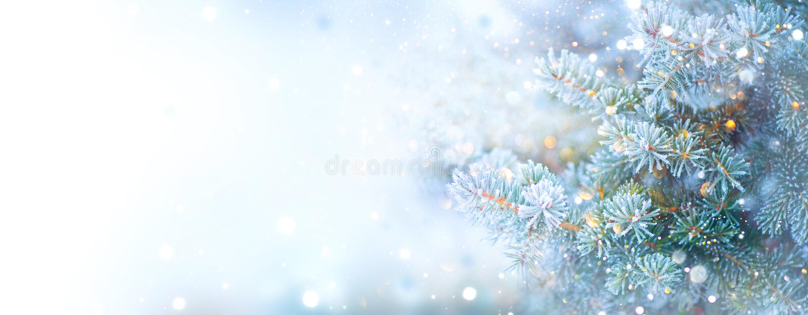 Christmas holiday tree. Border snow background. Snowflakes. Blue spruce, beautiful Christmas and New Year Xmas tree royalty free stock images