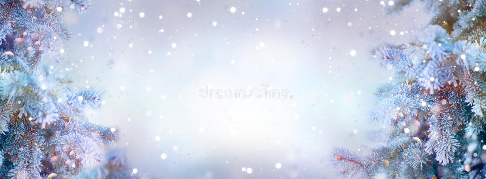Christmas holiday trees. Border snow background. Snowflakes. Blue spruce, beautiful Christmas and New Year Xmas trees art design. Abstract blue widescreen royalty free stock photo