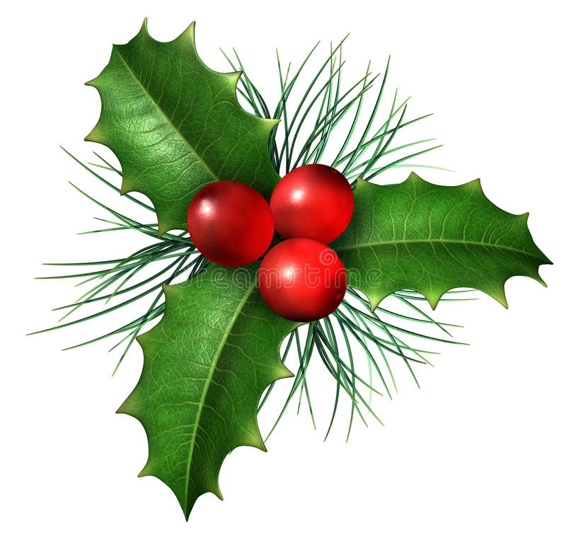 Free Christmas Holly Royalty Free Stock Photos - 26434168
