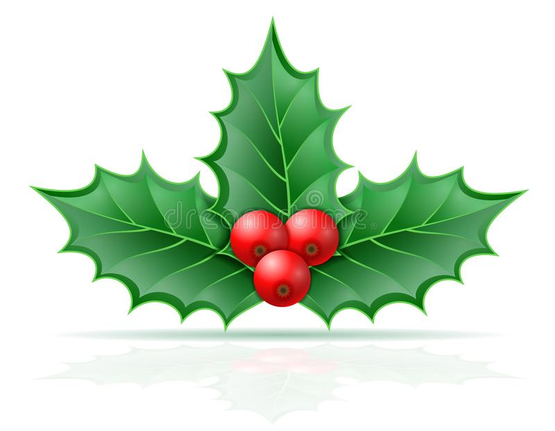 Christmas holly berries stock vector illustration. Isolated on white background vector illustration