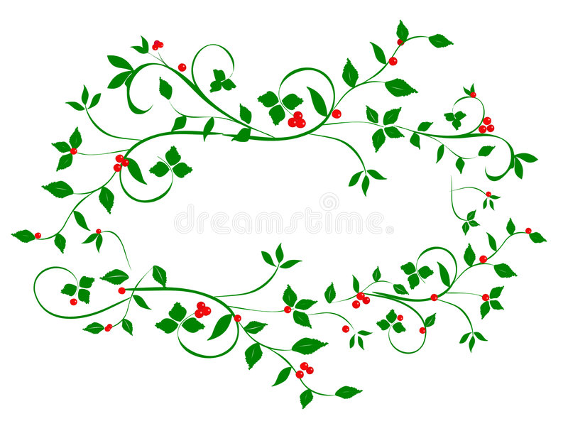 Christmas Holly Berries on Vines stock image
