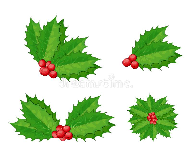 Christmas holly berry vector set for xmas composition. Decorative twigs, bunches of holly with red berries.  Branch of holly with stock illustration