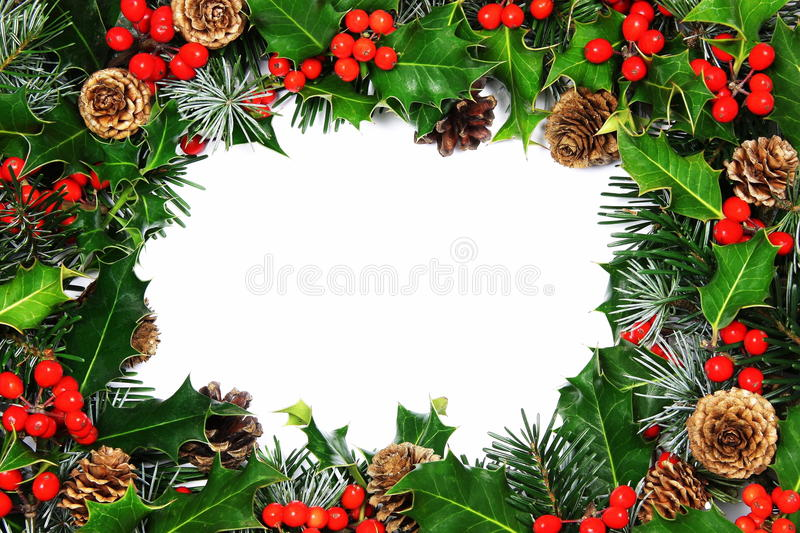 Christmas holly border. A traditional Christmas holly border comprising holly with vivid red berries, pine, cypress and cones with central room for text royalty free stock images