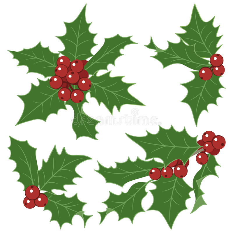 Download Christmas Holly Decorations Stock Vector - Image: 25995155