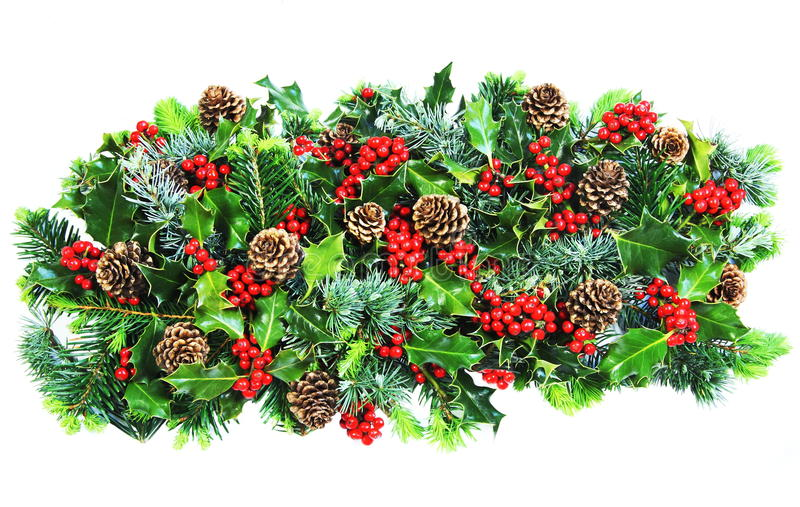 Download Christmas Holly And Foliage Stock Image - Image of horticultural, bright: 15308199