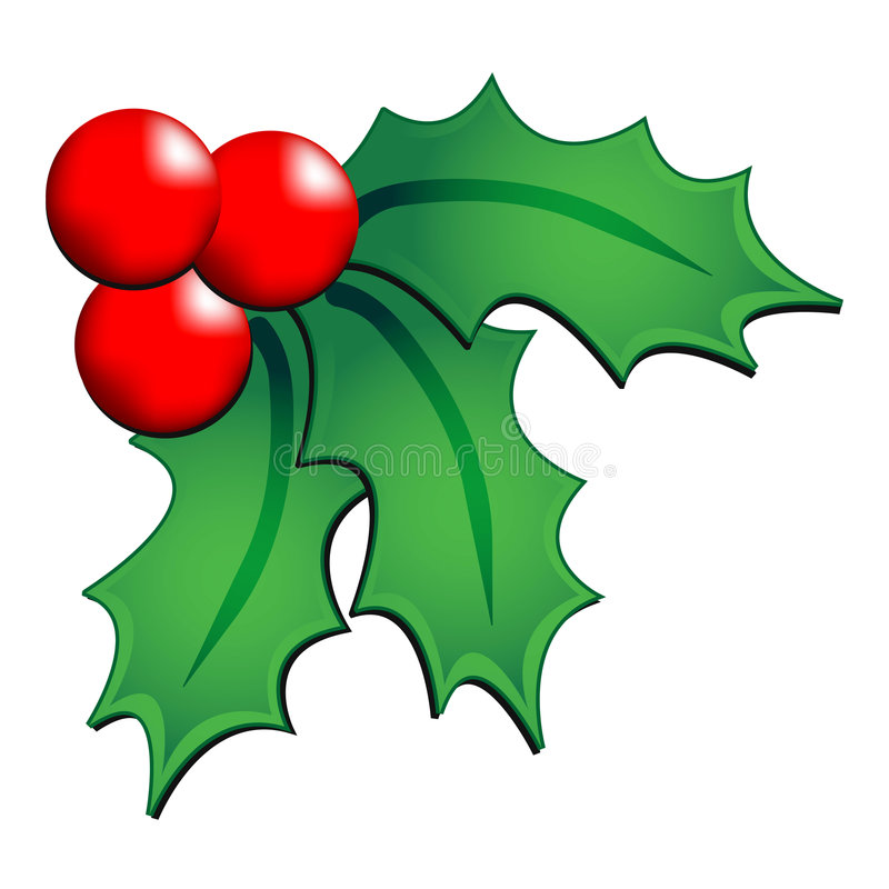 Christmas holly ornament vector illustration