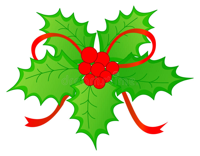 Christmas Holly & red berries. Isolated bright holly with red berries illustration / Clip art Christmas graphics vector illustration
