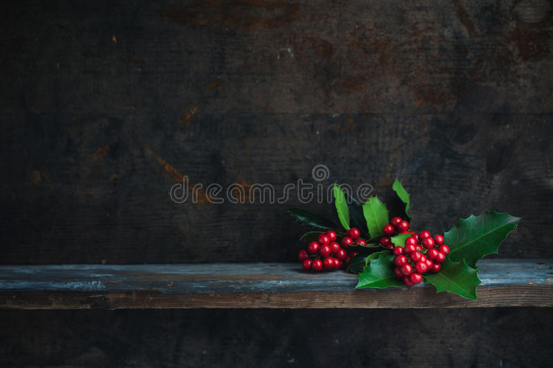 Christmas Holly royalty free stock images
