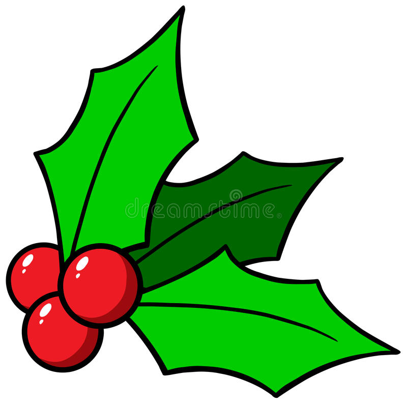 Christmas Holly. Vector illustration of Christmas Holly vector illustration